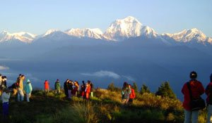 Poon Hill Trek & Jungle Safari